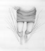 "Break, 36 x 40"" unframed, Pencil on Mylar"
