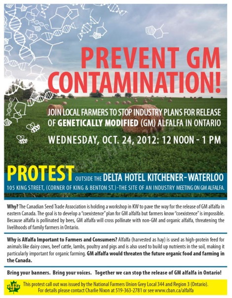 Prevent Genetically Modified Alfalfa Poster - Adobe Photoshop & Illustrator CS5. Client: Canadian Biotechnology Action Network, 2012