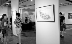 Evoking worlds solo exhibit opening by Maya Hum 2016