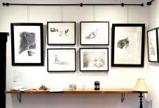 galleryshowpic